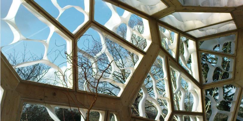 Looking through Hive at Kew Gardens