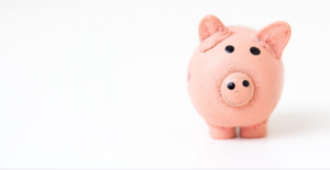 Photo of a small pink soft toy pig on a plain white backgrounde